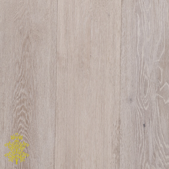 Arctic Oak GrandOak™ Engineered Oak Timber Flooring | Lion King Flooring